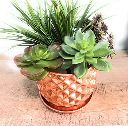 Textured Ceramic Planter Pot for Garden Flowers, Cactus Plant, with Drain Hole and Saucer, Set of 2 by Ashes To Beauty (Copper)