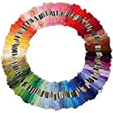 Aerfas 100 Skeins Per Pack of 8M 100-Color Cross Stitch Embroidery Threads Floss Sewing Art Craft (100 Color)