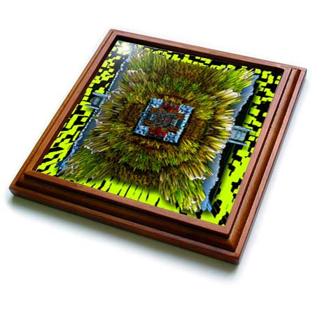 3dRose Jos Fauxtographee- 3D Plane Art Landscape - A 3 dimensional art piece made from a landscape with line green - 8x8 Trivet with 6x6 ceramic tile ()