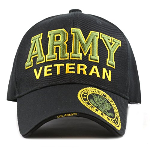 THE HAT DEPOT 1100 Official Licensed Military 3D Embroidered Army Veteran Cap (Army-Black) Black 3d Embroidered Hat