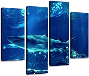 HIPOLOTUS 4 Panel Canvas Pictures Swimming Sharks Undersea Close ups and Pictures Wall Art Prints Paintings Stretched & Framed Poster Home Living Room Decoration Ready to Hang