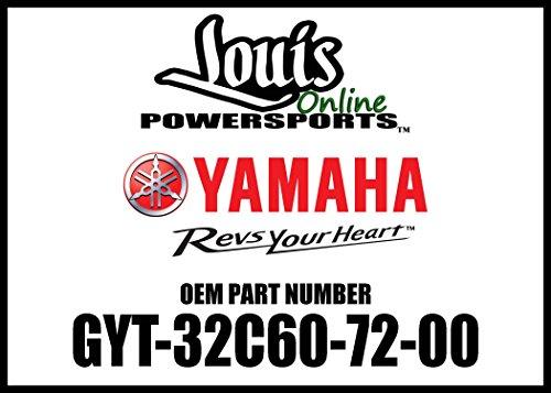 Yamaha Wr250X - 6