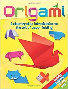 Origami A Step By Introduction To The Art Of Paper Folding Trevor Cook Sally Henry 9781848586505 Amazon Books