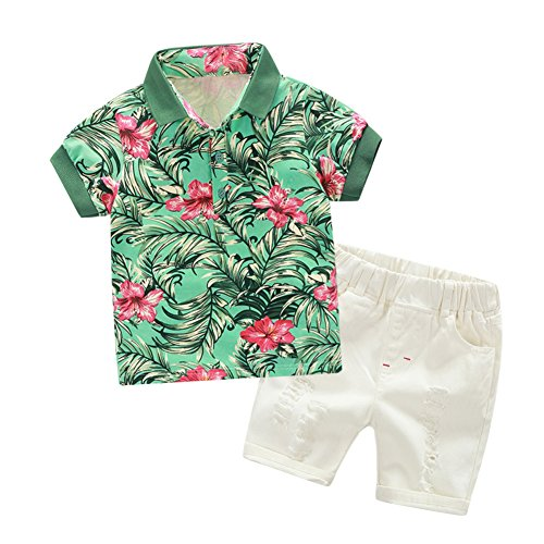 BAOBAOLAI Baby Boy Suit Short Sleeve Flower T-Shirt With Elastic Waist White Hot Holes Shorts Clothes Set, Green, -