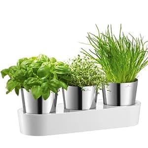 Auerhahn Herbs@Home 24-2506 - Macetas para especias