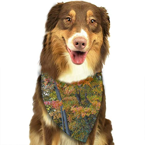 (Pet Scarf Dog Bandana Bibs Triangle Head Scarfs Beautiful Forest Accessories for Cats Baby)