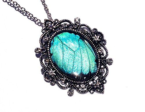(Real Blue Morpho Butterfly Wing Necklace - Large Turquoise Pendant - Real Insect Jewelry - December Birthstone)