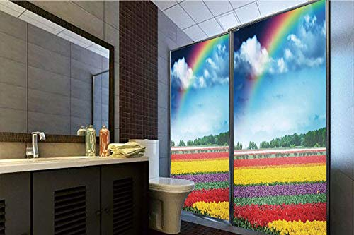 Privacy Window Film No Glue,Country Decor,Rainbow Over Multicolor Tulip Field Blooms Distant Forest at Spring Time Holland,70.86