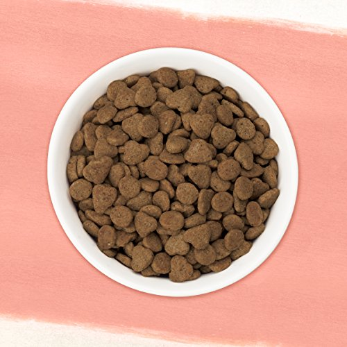 Purina Beyond Simply Natural, Adult Dry Cat Food 4