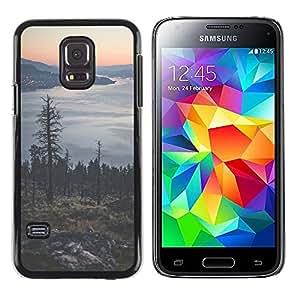 Exotic-Star ( Tree Lake Mountain City Lights ) Fundas Cover Cubre Hard Case Cover para Samsung Galaxy S5 Mini / Samsung Galaxy S5 Mini Duos / SM-G800 !!!NOT S5 REGULAR!