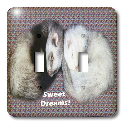 (3dRose lsp_17286_2 Sleeping Ferrets Toggle Switch)