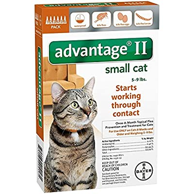 Cat Health Products Bayer Animal Health Advantage II Small Cat 6-Pack [tag]