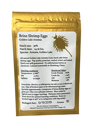 Golden Lake 10 Grams Brine Shrimp Eggs, Limited Batch 2019 Summer Harvest, GSL Strain, 90% Hatching Artemia, Fresh Stock Tested June 2019