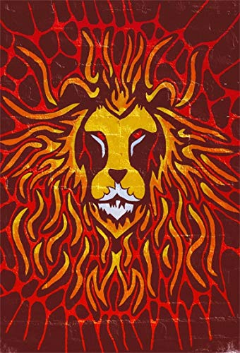 Leyiyi 6x9ft Cartoon Happy Halloween Backdrop Lion Face Emblem Hell Fire Flame Spider Net Texture Underground Anger Roar Photography Background Horror Night Party Photo Studio Prop Vinyl -