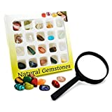 BEADNOVA Gemstone Rock Collection Kit for Kids Geology Science Learning with Magnifier Reading Glass (Pack of 20pcs)