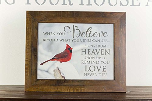 Summer Snow When You Believe Heaven Miracles Cardinal Red Bird Sympathy Religious Framed Art 16x20 (Restoration Brown ()