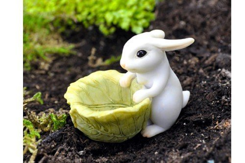 - Miniature Fairy Garden Bunny With Cabbage Planter