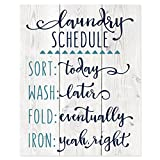 Laundry Schedule Funny Wall Sign 12x15