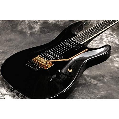 Aria Pro II/RS-CUSTOM II Black   B07NDWWLKH