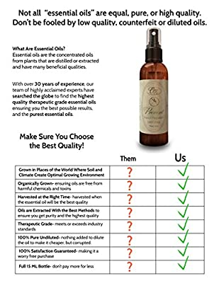 Insect Repellent for Travel, Camping or Home - Natural Mosquito Repellent, DEET Free 4oz -. Prevent by Ovvio Oils. Potent Blend of Lemon Eucalyptus, Tea Tree, Lemongrass, Cedar, Eucalyptus, and Castor Oils along with other Essential Oils in a Convenient S