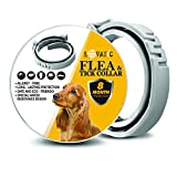 LOVATIC Flea Prevention Collar for Dogs - 8 Months Protection Flea and Tick Collar - Adjustable, Waterproof & Natural Flea and Tick Control Collar