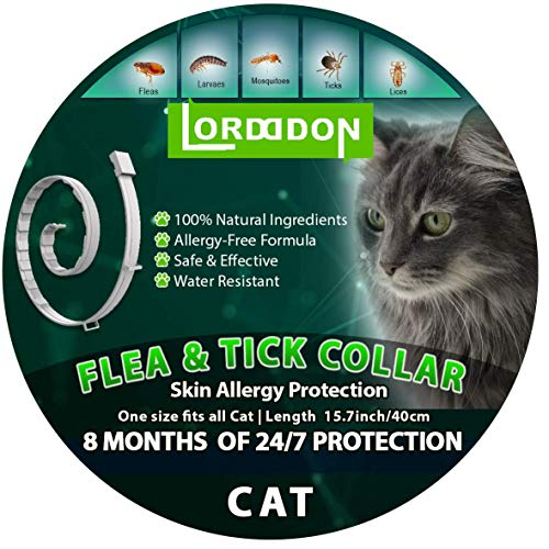 Buy flea collars for cats