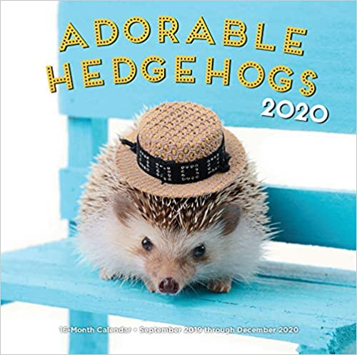 Hedgehogs are the new darlings of the Internet and social media pet circles and, while these little guys might look prickly, they're actually kindhearted sweeties who just want to be loved. This 16-month wall calendar features full-color pictures of these
