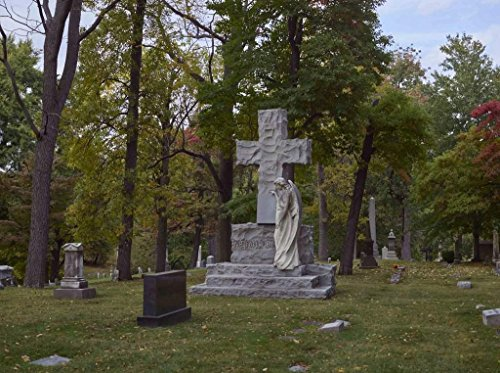 """Photograph 
