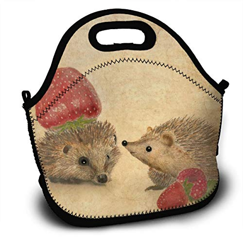 Dejup Lunch Bag Strawberry Hedgehog Print Tote Reusable Insulated Lunchbox, Shoulder Strap with Zipper for Kids, Boys, Girls, Women and Men]()