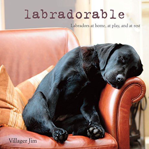 - Labradorable: Labradors at home, at large, and at play