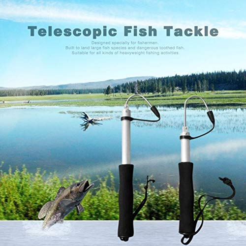 Detectoy 60cm Or 120cm Stainless Steel Sea Telescopic Fishing Gaff Aluminum Alloy Spear Hook Fish Tackle Outdoor Fishing Tool by Detectoy (Image #3)