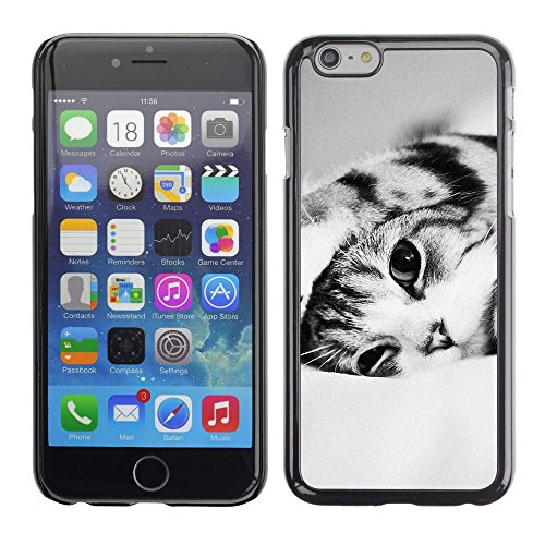 Plastic Shell Protective Case Cover || Apple iPhone 6 || Black White Shorthair Cat @XPTECH
