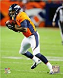 Julius Thomas Denver Broncos 2013 NFL Action Photo 8x10