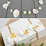 HZOnline-Artificial-Silk-Phalaenopsis-Flower-Heads-Fake-Butterfly-Orchid-Head-Floral-Bouquet-for-Crafts-Wedding-Decoration-DIY-Making-Bridal-Hair-Clips-Headbands-Dress-Photography-Props-20pcs-White