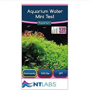 NT Labs Prueba de Agua para Acuario de pH Ammonia Nitrite120: Amazon.es: Productos para mascotas