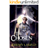 The Chosen: Age of the Gods (The Blood and Brotherhood Saga Book 2)