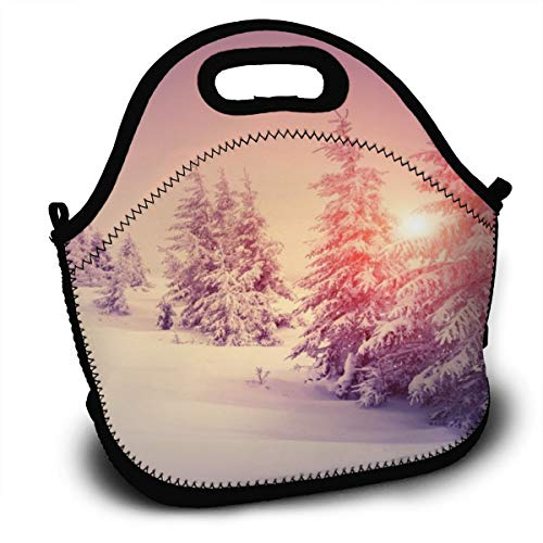 Dejup Lunch Bag Beautiful Snow Scene Tote Reusable Insulated Lunchbox, Shoulder Strap with Zipper for Kids, Boys, Girls, Women and Men -