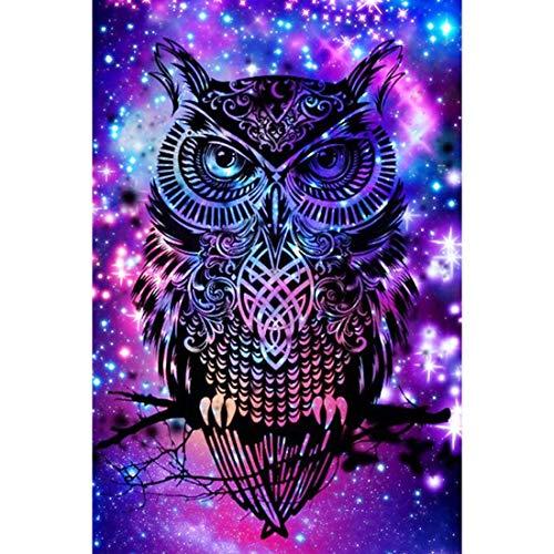 Top 10 best 5d diamond painting owl kit for 2019