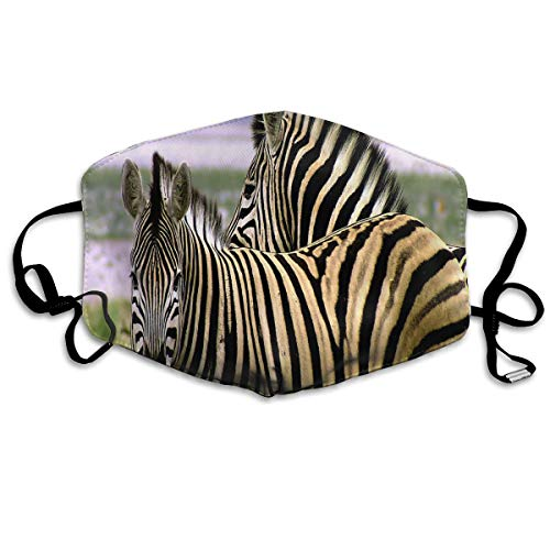 Anti Dust Mask Animals Of Africa Zebra Face Mask Winter Healthy Windproof For Women -