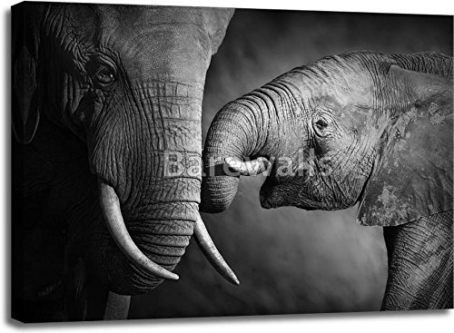 Elephant Affection (Artistic Processing) Gallery Wrapped Canvas Art (30in. x 40in.) by barewalls