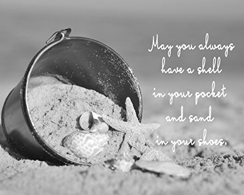 black and white sea shell quote art print seashells picture large inspirational photographic print