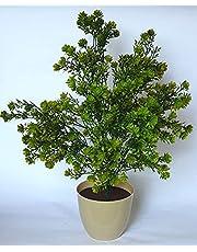 ازهار صناعية وشجرة النباتات - 45-60 سم , 2725618153587
