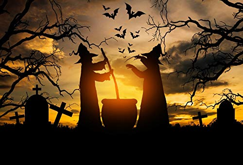 Baocicco 8x6ft Vinyl Halloween Theme Backdrop Gloomy Scene Photography Background Witch in The Halloween Night Scary Graveyard Tombstone Creepy Backdrop Children Baby Adult Portraits Studio Props -