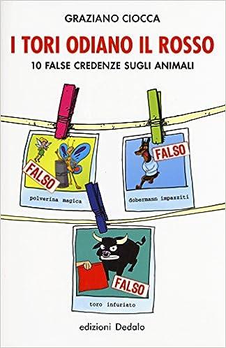 I tori odiano il rosso. 10 false credenze sugli animali La ...