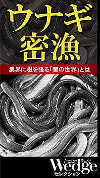 ウナギ密漁 業界に根を張る「闇の世界」とは Wedgeセレクションのサムネイル画像
