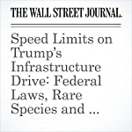 Speed Limits on Trump's Infrastructure Drive: Federal Laws, Rare Species and Nimbys | David Harrison