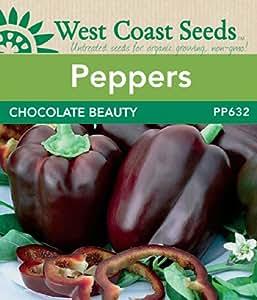Pepper Seeds - Chocolate Beauty F1