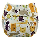 Best Blueberry Bottom Cloth Diaper Covers - Blueberry One Size Simplex All in One Cloth Review