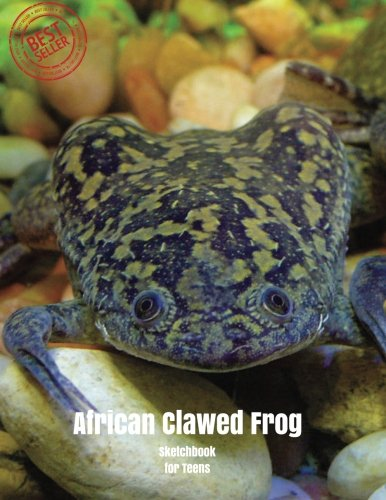 African Clawed Frog Sketchbook for Teens: Blank Paper for Drawing, Doodling or Sketching 100 Large Blank Pages (8.5