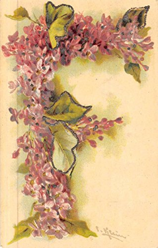 Klein Artist Signed Alphabet Letter F Glitter Flowers Antique Postcard K49221